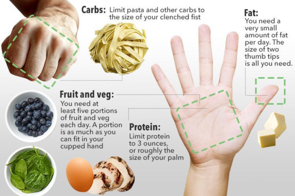 carb protein fat